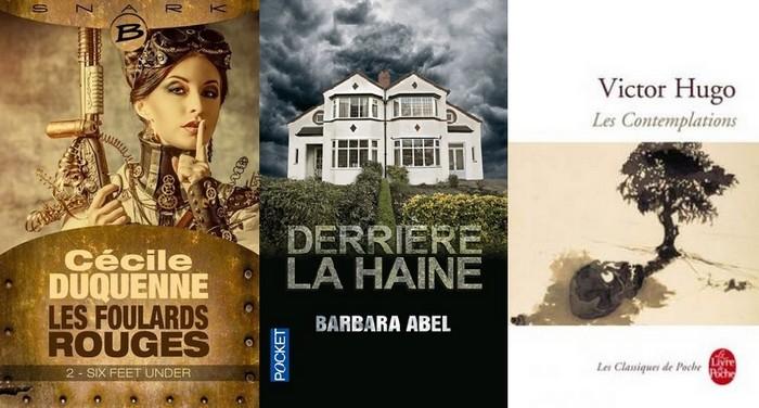 http://sans-grand-interet.cowblog.fr/images/Bilansmensuels/Lecturesaout2014partie3.jpg