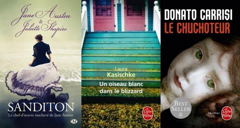 http://sans-grand-interet.cowblog.fr/images/Bilansmensuels/Lecturesnovembre2014partie2.jpg