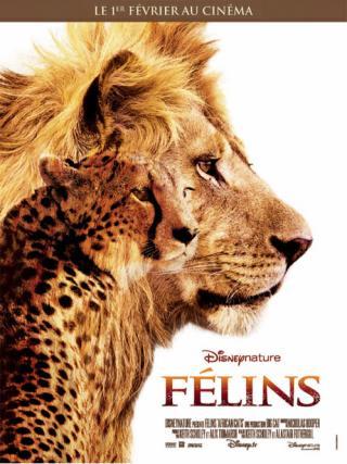 http://sans-grand-interet.cowblog.fr/images/Films/Felins4.jpg